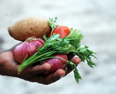 ruoko-holding-veges-300x201_diabetes-article-homepage